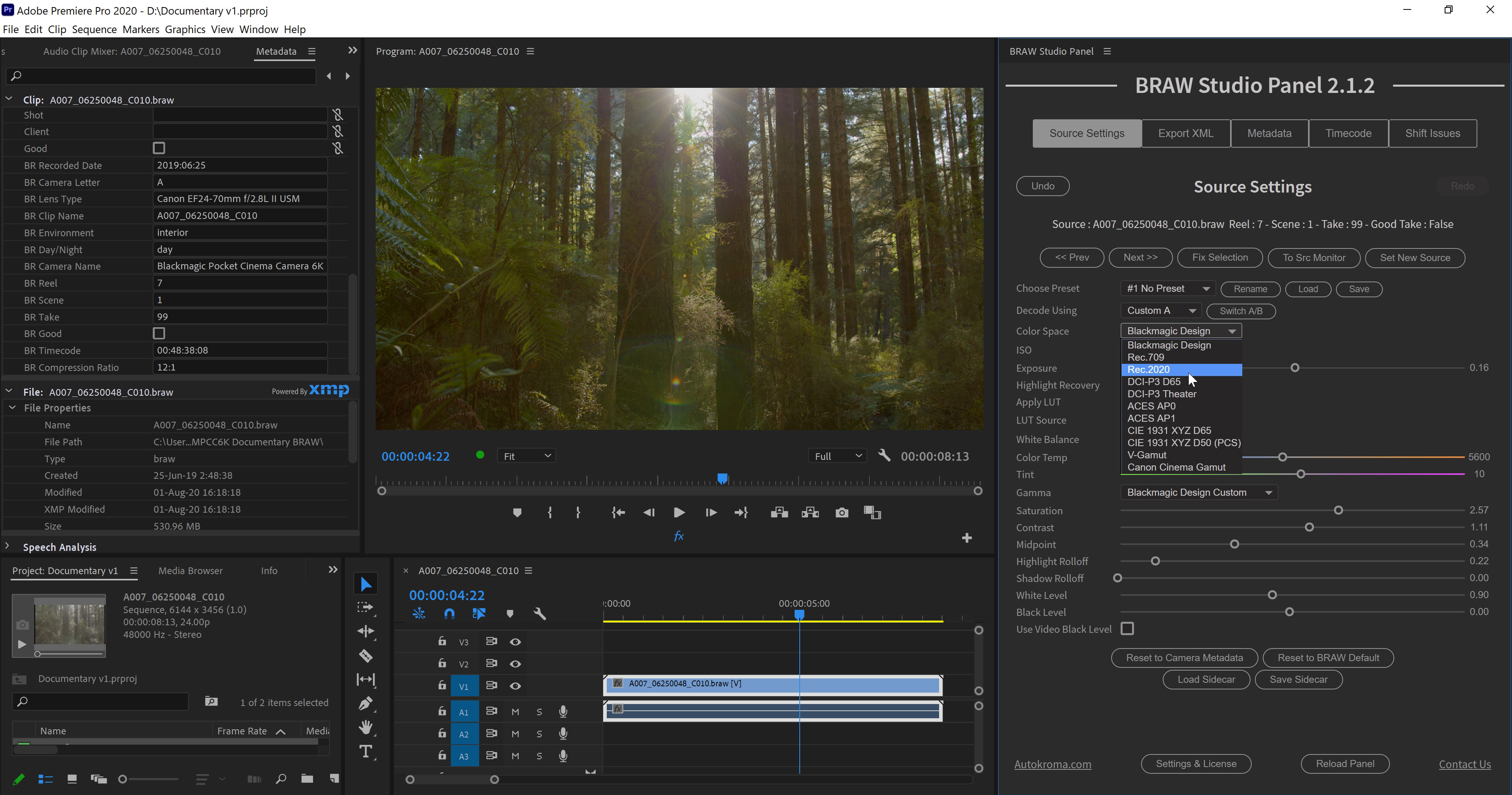 BRAW Studio V2 for Adobe Premiere Pro on Microsoft Windows (Blackmagic RAW importer plugin screenshot) showing the Source Settings Panel